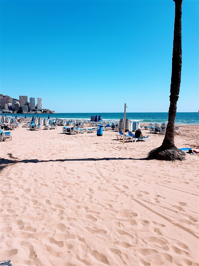 Benidorm Beach Real Estate immo