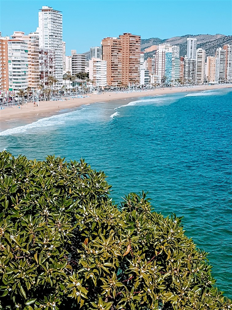 Benidorm Real Estate Immo